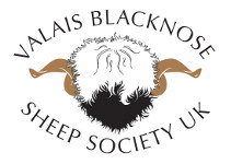 Valais Blacknose Sheep Society