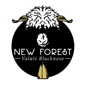 NFVB Logo